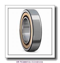 500 mm x 670 mm x 170 mm  NKE NNCF49/500-V Rolamentos cilíndricos
