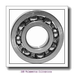 25 mm x 62 mm x 24 mm  NKE NJ2305-E-TVP3+HJ2305-E Rolamentos cilíndricos