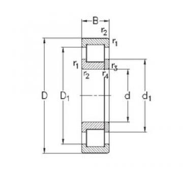 105 mm x 225 mm x 49 mm  NKE NUP321-E-MA6 Rolamentos cilíndricos