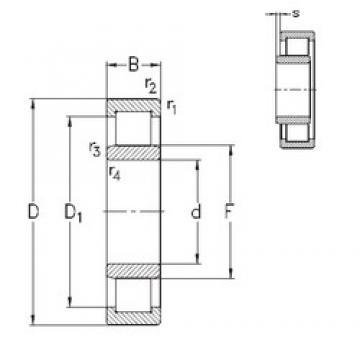95 mm x 145 mm x 24 mm  NKE NU1019-E-MPA Rolamentos cilíndricos