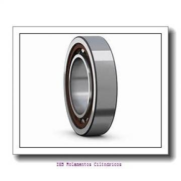 25 mm x 52 mm x 18 mm  NKE NUP2205-E-MPA Rolamentos cilíndricos