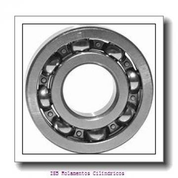 170 mm x 310 mm x 52 mm  NKE NJ234-E-M6 Rolamentos cilíndricos