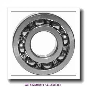 80 mm x 125 mm x 60 mm  NKE NNCF5016-V Rolamentos cilíndricos
