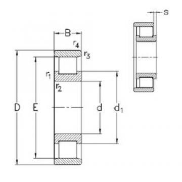 65 mm x 120 mm x 23 mm  NKE N213-E-M6 Rolamentos cilíndricos