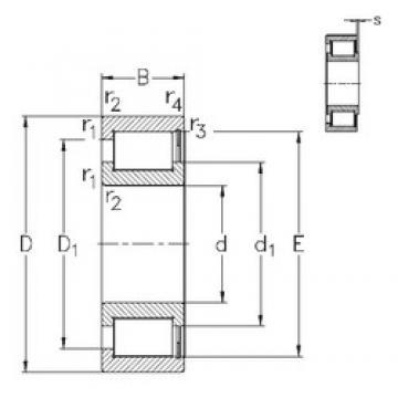 25 mm x 47 mm x 16 mm  NKE NCF3005-V Rolamentos cilíndricos